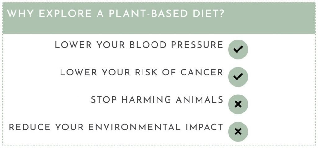 Reasons to Explore a Plant-Based Diet-Lower Blood Pressure, Reduce Cancer Risk, Stop Harming Animals, Reduce Environmental Impact