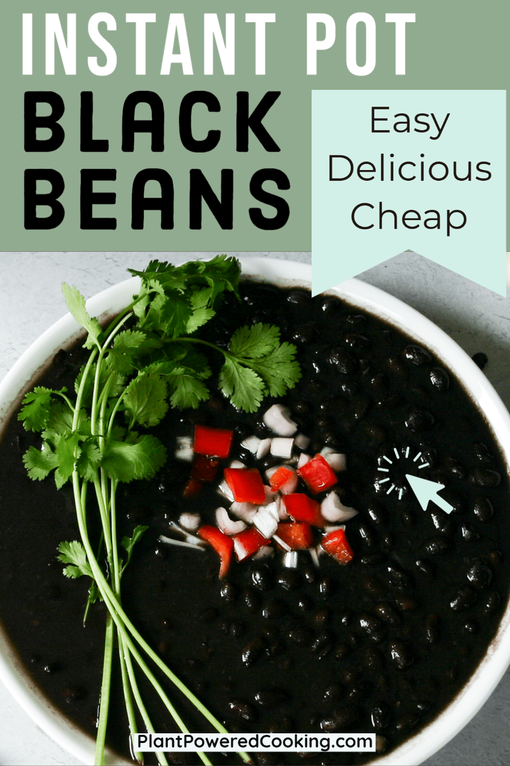 """Large bowl of best black beans with cilantro, red pepper, and onion and text overlay that reads """"easy, delicious, cheap"""""""
